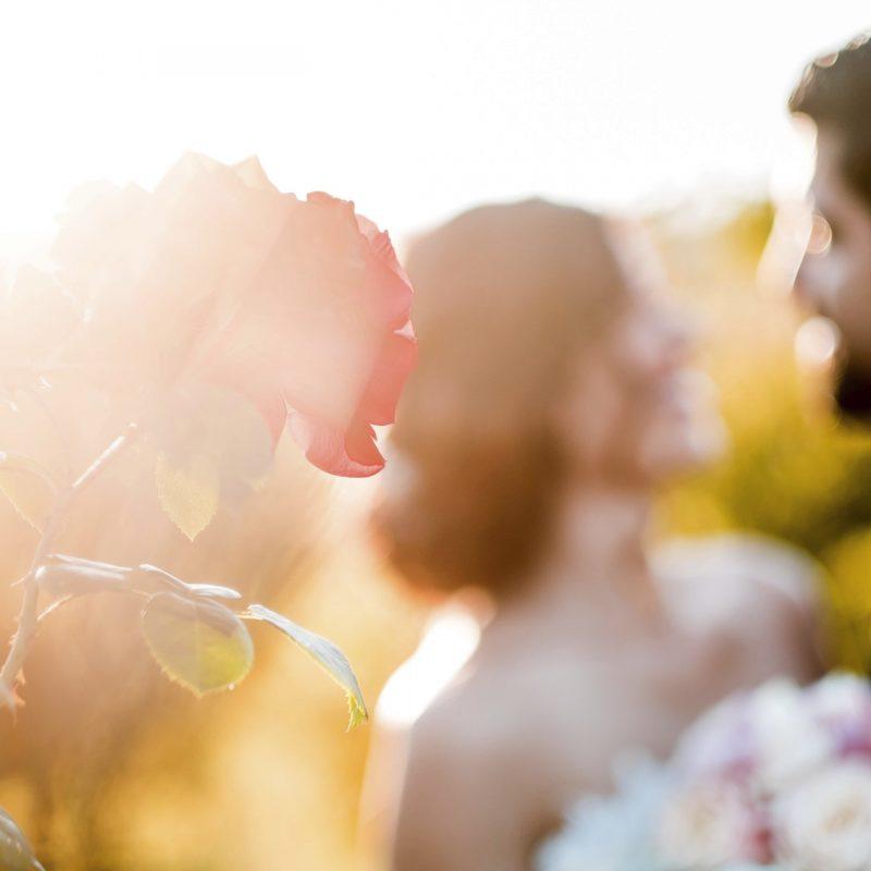 Aida + Tim | Hochzeitsfotografen am Bodensee aut__hochzeitsfotos_0675